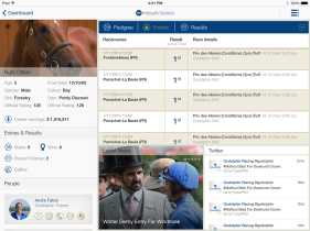 3.2.1.b-Horse-Overview---Entries_SW_20141205